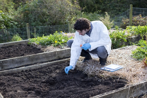 scientist with soil sample